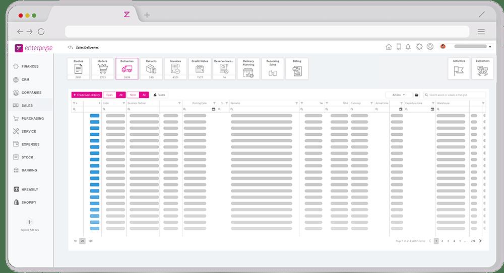Enterpryze delivery module screenshot on browser app